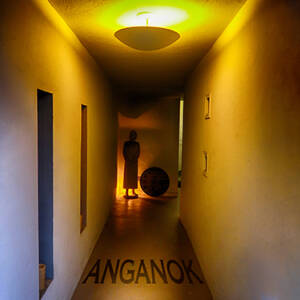 Residents, The - Anganok