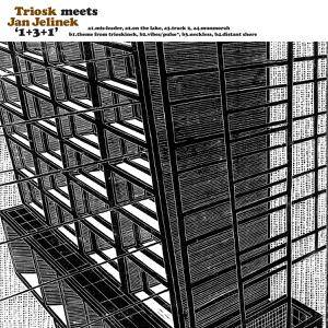 Triosk meets Jan Jelinek - 1+3+1 [vinyl + downloadcode]