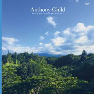 Anthony Child - Electronic Recordings from Maui Jungle Vol. 2 [vinyl 2LP + downloadcode]